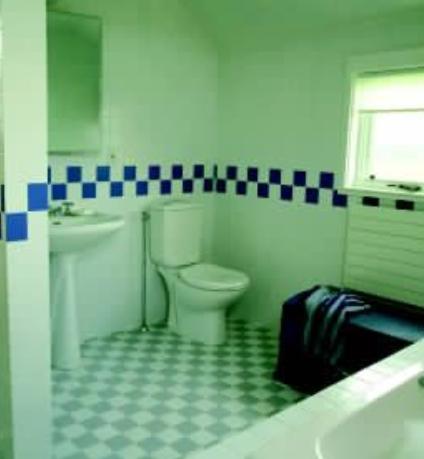 水电路改造注意事项,卫生间适宜安装哪一种热水器,改造水管后如何进行试水  装修知识  第2张